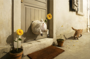 Client: Pedigree, Agency: TBWA, Paris, Art Director: Celine Arti
