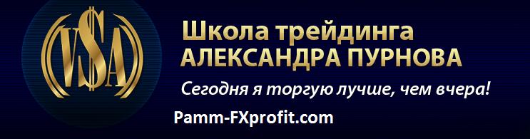 Школа трейдинга Александра Пурнова